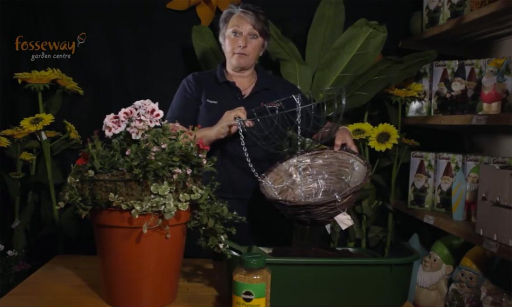 How to make a hanging basket video still