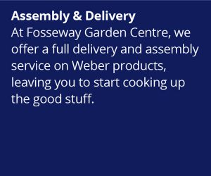 Weber World assembly and delivery service