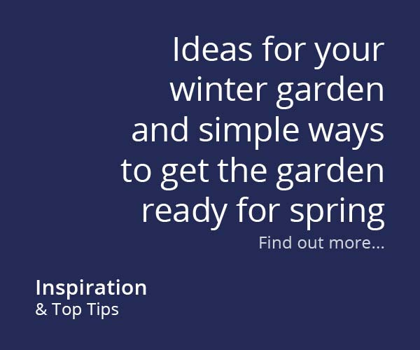 Ideas for your winter garden