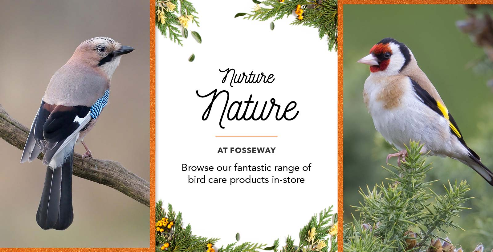 Bird Care Products at Fosseway