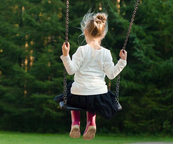 Fosseway Fun Farm Tree Swing