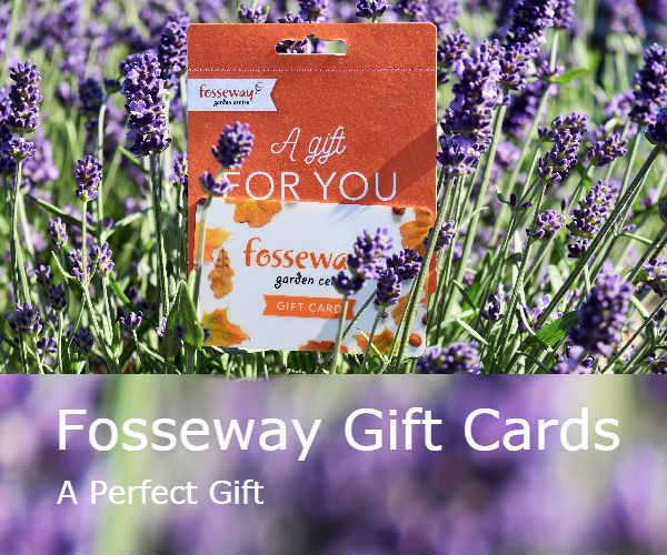 Fosseway Garden Centre Gift Cards