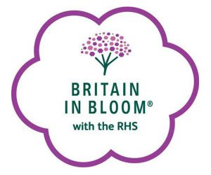 RHS Britian in Bloom
